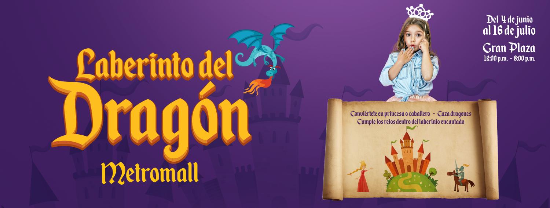 Cover dragon